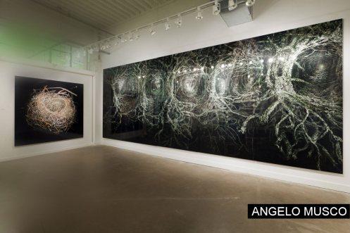 angelo-musco-berlin-03