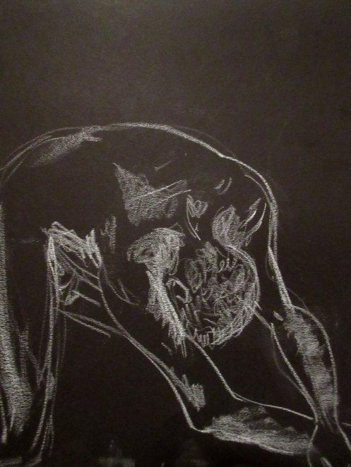 cambria-20150304-05